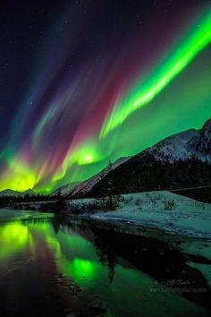 308  The Force Northern Lights Alaska