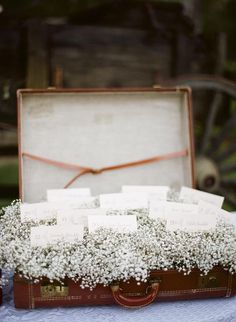 baby's breath escort card display (minus the suitcase- doesn't match venue)