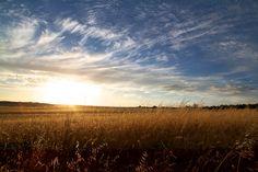 Wheatbelt Sunrise
