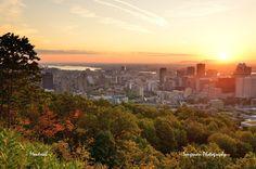 50 choses à faire pdt le printemps 2014 Montréal