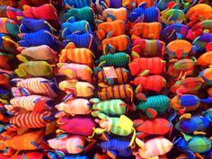 Colorful Sri Lanka