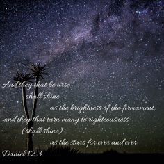 Daniel And they that be wise shall shine as the brightness of the firmament; and they that turn many to righteousness as the stars for ever and ever. Wisdom Bible, Bible App, Ever And Ever, Righteousness, King James, Free Reading, Bible Scriptures, Behavior, Stars