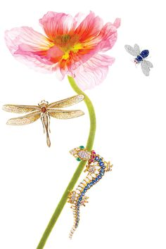 These statement brooches, from Le Vian's diamond-winged fly to Tiffany's golden dragonfly to David Webb's bejeweled salamander, have a whimsical charm.