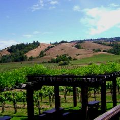 Napa, CA- My Auntie lives here...lucky us we get to visit.