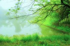 5月 夢の世界^^ - miki 2 - Picasa ウェブ アルバム