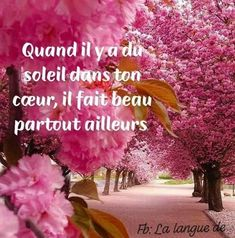 Quand il y a ... Belle French, Beau Message, Jolie Phrase, Happy Friendship Day, French Quotes, Romantic Love Quotes, Positive Mind, Positive Affirmations, Beautiful Words