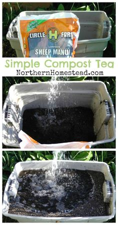 Beginner Gardening How to Make Simple Compost Tea - Compost tea is simply tea made out of compost. Compost tea can be made very simply, and this is the way we do it. Compost Soil, Compost Tea, Composting, Compost Container, Container Gardening, Farm Gardens, Small Gardens, How To Make Compost, Organic Gardening Tips