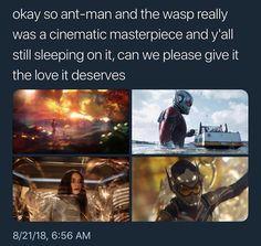 Antman and Wasp Marvel Memes, Marvel Dc Comics, Marvel Avengers, Black Widow Movie, Wasp, Bucky Barnes, Tom Holland, Marvel Cinematic Universe, Fangirl