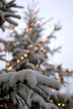 en We Heart It❄Magical Winter❄ compartido por Cillyhammes . en We Heart It January Winter view denny bitte Fabulous Wallpaper Backgrounds For Christmas & New Year