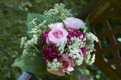Anglické růže Geoff Hamilton a Alnwick rose v doprovodu hvozdíku bradatého a kerblíku lesního. Paspartu tvoří listy bohyšky.