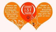 Adopt a pet: On this Brazilian Valentine's day Give the Gift of LOVE | Ian Somerhalder Foundation