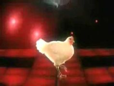 Happy Birthday Chicken Techno Style Funny and Silly Happy Birthday Videos   Let's Resolve to Evolve