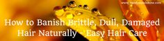 How to Banish Brittle, Dull, Damaged Hair Naturally – Easy Hair Care