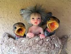 Fairy baby in nest with baby birds