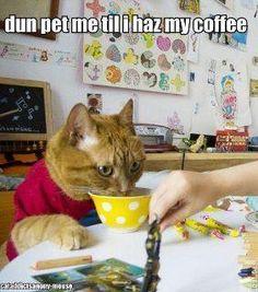 gotz to have my coffee!