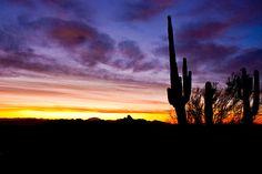 Desert Sunrise 7