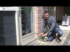 Mieren bestrijden in de tuin en in huis - Tuinieren.nl