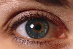 color flecks in eyes, -light Damien Lovegrove, Texture Mapping, Anatomy Reference, Human Anatomy, Eye Color, Close Up, Eyes, Blackbird, Google Search