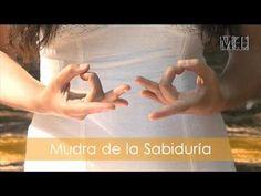 Los Mudras son gestos realizados por nuestras manos, se utilizan en diversas técnicas hindúes y orientales, debemos tener en cuenta que este es un ejercicio que monitoriza cada acto con una correspondencia determinada.    Más información en http://www.yosetusabes.com  Música: Audionautix.com