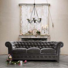 dark gray velvet sofa with pale greige walls.