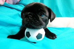 Me and my ball...