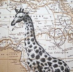 Walk on the wild side!  Safari prints - giraffe, lion, zebra - on vintage style African maps; by CrowBiz