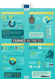 #Acquaculture in the #EU