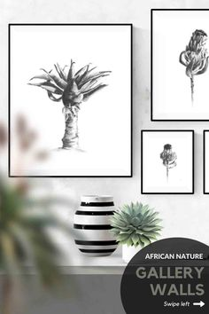 Four different layout ideas for hanging four pictures in your home. Loving these charcoal drawings of aloe succulent plants and protea flowers? Browse my Etsy store for a range of wall-art prints and print sets inspired by African nature. #wallart #etsy #desert #printable #DIY #DIYhomedecor #prints #bedroom #succulent #joshuatree #blackandwhite #modern #minimalist #botanical #livingroom #bedroom #set #ideas #simple Grey Wall Art, Black And White Wall Art, Artwork For Living Room, Living Room Pictures, Wall Art Decor, Wall Art Prints, Modern Drawing, Baobab Tree, Charcoal Drawings