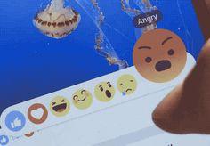 Actualités web de la semaine : Réactions Facebook, Numerama et le top des…