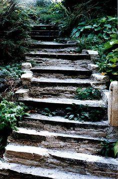 Burg Bernstein - Stiege by librarymistress Bernstein, Peaceful Life, Stairways, Stepping Stones, Garden Ideas, Photo And Video, Landscape, World, Outdoor Decor