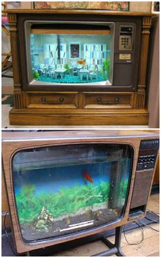 Picture house tv tank
