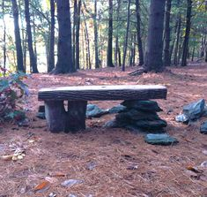 d-i-y bench made of stump, slab, stone