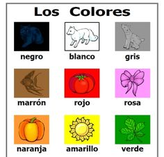 Los Colores printable colors in Spanish activity set with posters and several different types of cards -- FREE to download & print!