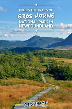 Hiking Gros Morne National Park in Newfoundland Newfoundland Canada, Newfoundland And Labrador, Newfoundland Tourism, Montreal, Solo Travel, Travel Usa, Travel Tips, Travel Guides, Places To Travel