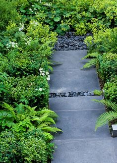Garden path slate london 32 New ideas Slate Garden, Ferns Garden, Garden Fencing, Garden Paths, Garden Landscaping, Landscaping Ideas, Fence, Chelsea Flower Show, Amazing Gardens