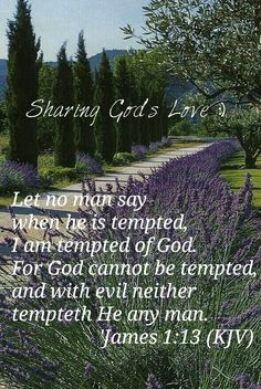 Let no man say when he is tempted, I am tempted of God. For God cannot be tempted, and with evil neither tempteth He any man.  'James 1:13 (KJV) {DM}