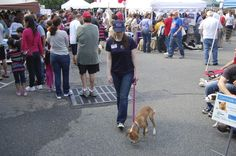 A Ridgewood Veterinary Hospital employee walks one of the adoptable pets.