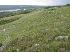2009 - south and east of Edam, north side of the North Saskatchewan River.