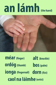 #irishfortheeyes. Learn Gaeilge, the Irish language. hand, finger, knuckle, thumb, palm, nail, fingernail, fist, wrist, body