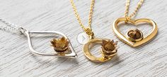 The Blessing Flower Regenerating Flower Necklaces This tiny desert flower springs to life with a few drops of water. It can re-bloom for 30 years—a symbol of hope, rebirth, or someone special.