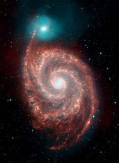 """NASA's Spitzer Space Telescope has captured infrared images of the """"Whirlpool Galaxy"""" (M51), revealing strange structures bridging the gaps between the dust-rich spiral arms, and tracing the dust, gas and stellar populations in both the bright spiral galaxy and its companion."""