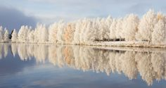 morning in Rovaniemi (Lapland), Finland