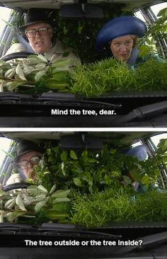 Mind the tree
