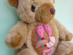Simmone Spring and her Felt Anatomy. Here is an anatomical bear with wool felt and fleece, needle felted and hand dyed.