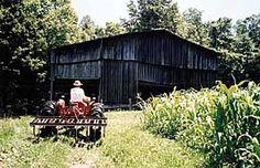 Fiber Farmer & Natural Dye ~ Hill and Hollow ~ 207 miles