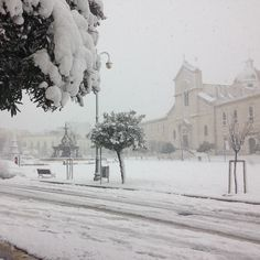 Ancora neve ❄️ #snow #giovinazzo #winter #neve
