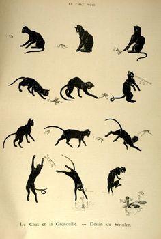 :: Steinlen, Le chat et la grenouille ::