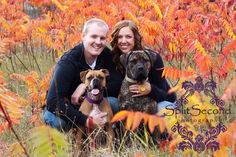 engagement picture ideas with dogs - Google Search