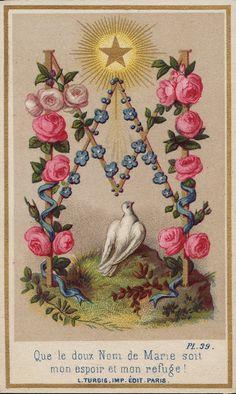 Viva a Nossa Senhora do Rosário: 07/10/2014