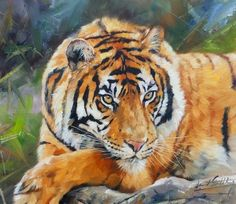TIGER Superb New DAVID STRIBBLING Oil Painting #Realism